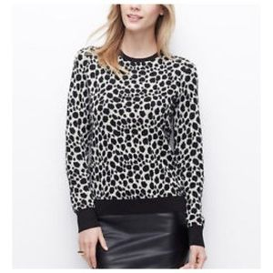Ann Taylor Cheetah Print Sweater
